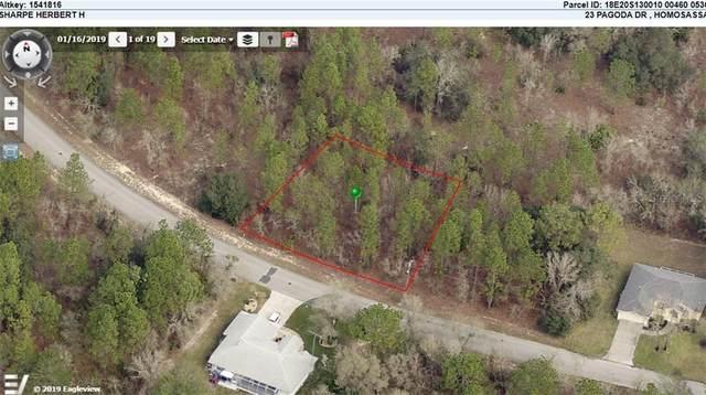 23 Pagoda Drive, Homosassa, FL 34446 (MLS #O5938164) :: Rabell Realty Group