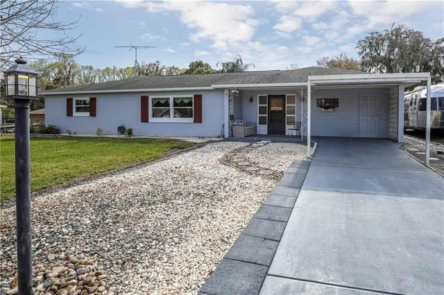 3 Tangerine Road, Yalaha, FL 34797 (MLS #O5938292) :: Vacasa Real Estate