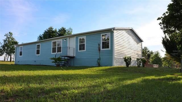 8300 NE 41ST Court, Anthony, FL 32617 (MLS #O5938503) :: Bustamante Real Estate