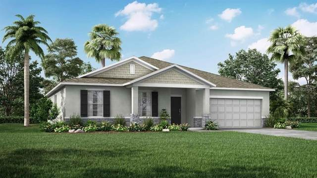 503 Tampa Circle, Poinciana, FL 34759 (MLS #O5938532) :: The Light Team