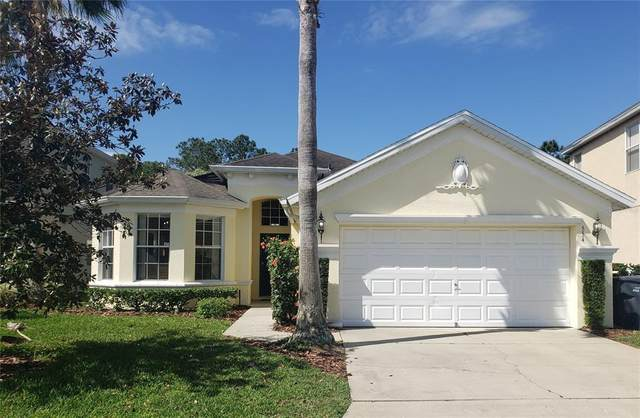 554 Tupelo Circle, Davenport, FL 33897 (MLS #O5938610) :: Bustamante Real Estate