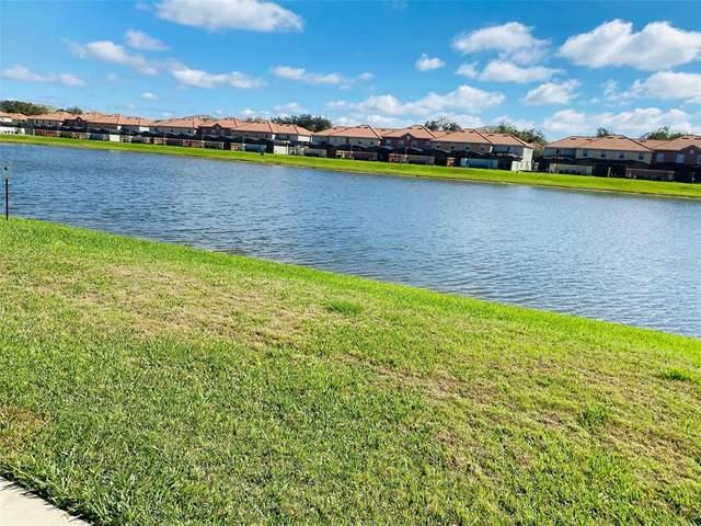 3035 Beach Palm Avenue, Kissimmee, FL 34747 (MLS #O5938635) :: Team Bohannon Keller Williams, Tampa Properties