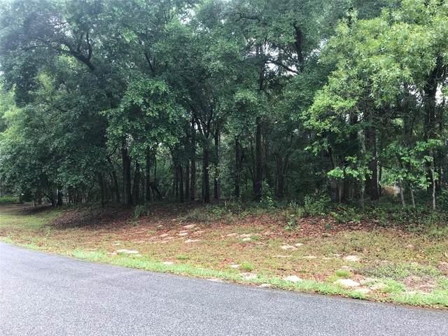 133 Piney Woods Road, Apopka, FL 32703 (MLS #O5938675) :: Bob Paulson with Vylla Home