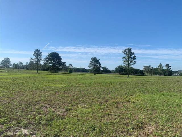 Lot 36 Ranch Club Boulevard, Groveland, FL 34736 (MLS #O5938683) :: The Lersch Group