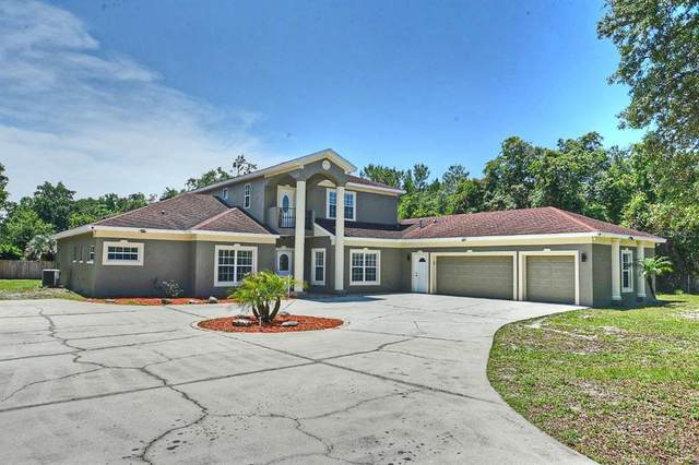 3188 Curtis Drive, Apopka, FL 32703 (MLS #O5938926) :: Vacasa Real Estate