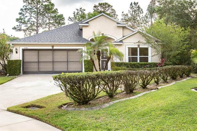 1701 Palmetto Pine Lane, Orlando, FL 32826 (MLS #O5938981) :: Vacasa Real Estate
