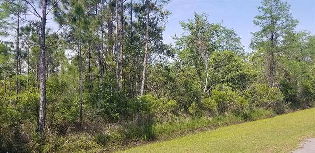 Wembley Avenue, Orlando, FL 32833 (MLS #O5939002) :: Armel Real Estate