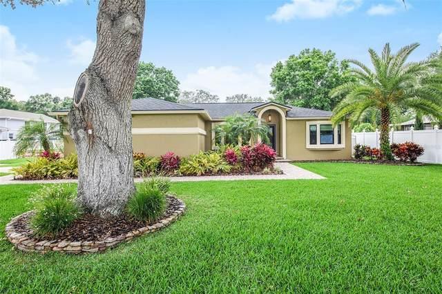 3001 Waylon Lane, Valrico, FL 33596 (MLS #O5939141) :: Vacasa Real Estate