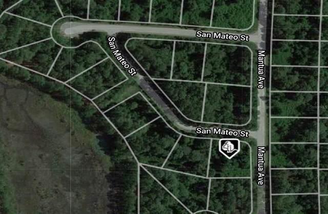 8680 San Mateo Street, Sebring, FL 33872 (MLS #O5939230) :: Armel Real Estate