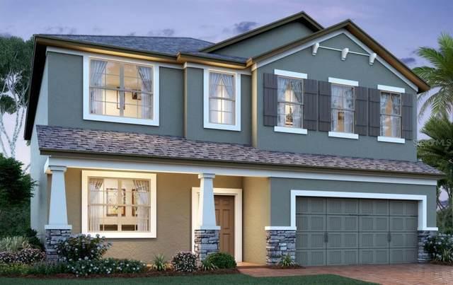 2647 Hinoki Cypress Place, Sanford, FL 32773 (MLS #O5939407) :: Florida Life Real Estate Group