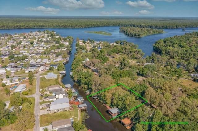 111 Easement Lane, Welaka, FL 32193 (MLS #O5939670) :: Bustamante Real Estate