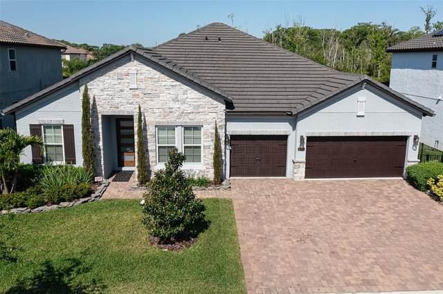 2726 Meadow Sage Court, Oviedo, FL 32765 (MLS #O5940154) :: Your Florida House Team