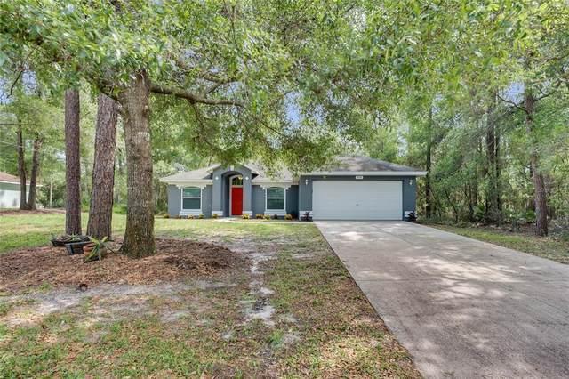 955 Cassadaga Road, Lake Helen, FL 32744 (MLS #O5940257) :: Your Florida House Team