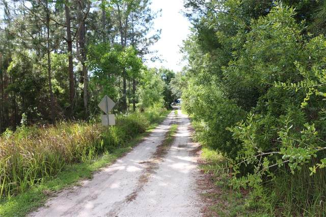2050 Lorene Lane, Deltona, FL 32738 (MLS #O5940332) :: The Kardosh Team