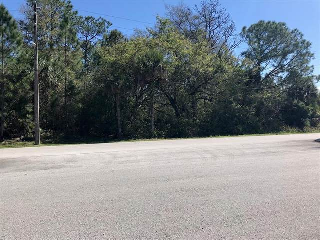 Secret Lake Drive, Kissimmee, FL 34747 (MLS #O5940357) :: Positive Edge Real Estate