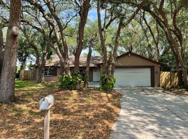 1243 Royal Oak Drive, Dunedin, FL 34698 (MLS #O5940403) :: Heckler Realty