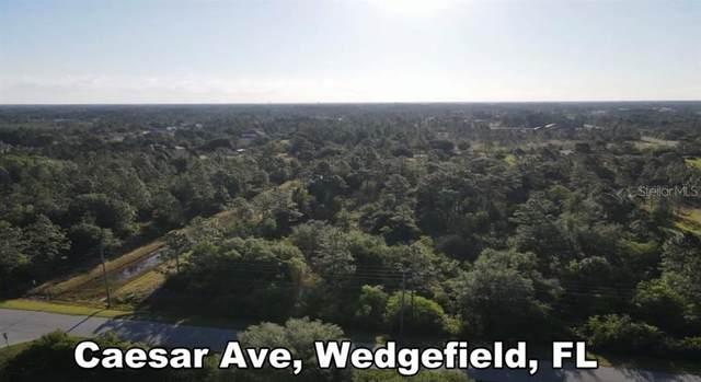Caesar Avenue, Orlando, FL 32833 (MLS #O5940703) :: Rabell Realty Group