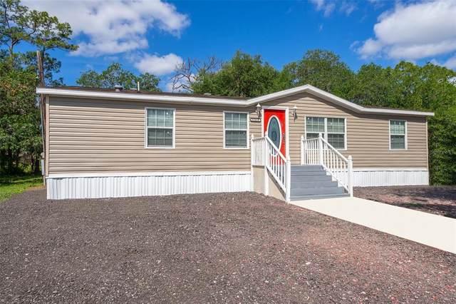 3380 Hickory Tree Road, Saint Cloud, FL 34772 (MLS #O5940814) :: Premier Home Experts