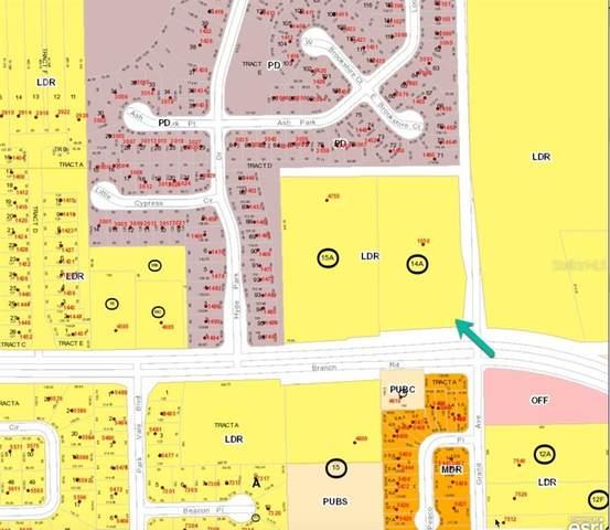 1550 Grand Road, Winter Park, FL 32792 (MLS #O5941110) :: CGY Realty