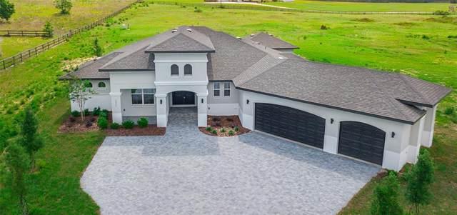 17237 Heartwood Loop, Winter Garden, FL 34787 (MLS #O5941165) :: CGY Realty