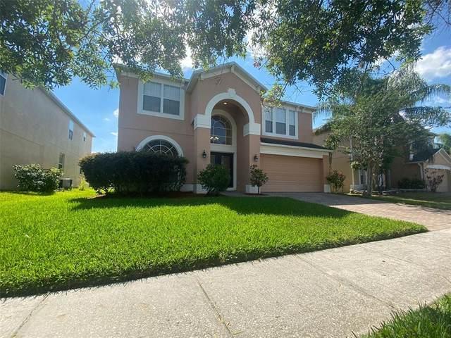 337 Bella Vida Boulevard, Orlando, FL 32828 (MLS #O5941275) :: BuySellLiveFlorida.com