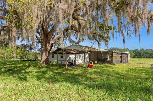 10276 SW 25TH Street, Webster, FL 33597 (MLS #O5941344) :: The Lersch Group