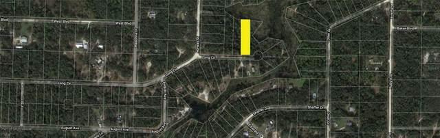 Long Circle, Webster, FL 33597 (MLS #O5941347) :: Globalwide Realty