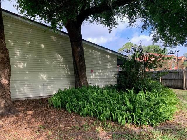 4065 E Michigan Street #4065, Orlando, FL 32812 (MLS #O5941614) :: Your Florida House Team