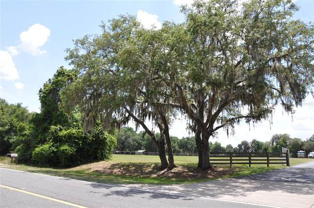 Cr 452, Leesburg, FL 34788 (MLS #O5941629) :: Lockhart & Walseth Team, Realtors