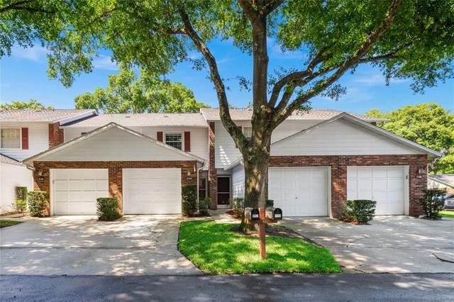 5164 Lazy Oaks Drive, Winter Park, FL 32792 (MLS #O5941746) :: RE/MAX Premier Properties