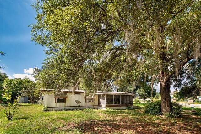 21010 Niles Avenue, Mount Dora, FL 32757 (MLS #O5941763) :: Expert Advisors Group