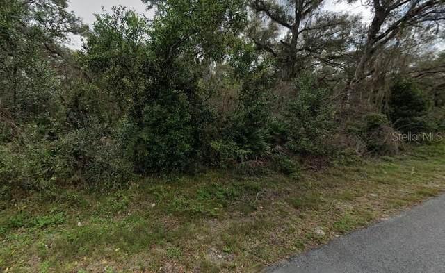 Lewis Lane, Webster, FL 33597 (MLS #O5941783) :: Bob Paulson with Vylla Home