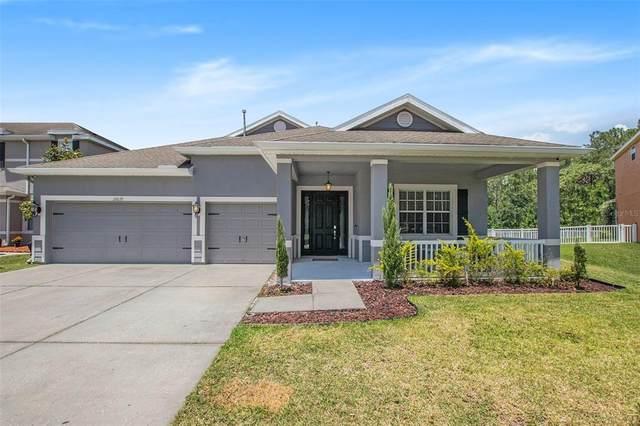 20039 Oakflower Avenue, Tampa, FL 33647 (MLS #O5941807) :: Pepine Realty
