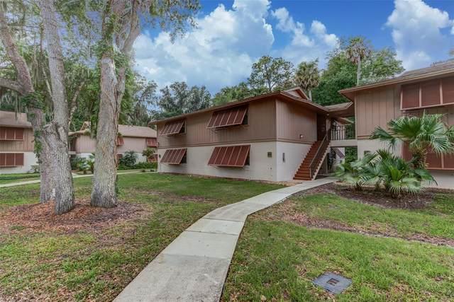 100 Sweetgum Woods Court 11B, Deltona, FL 32725 (MLS #O5941908) :: Coldwell Banker Vanguard Realty