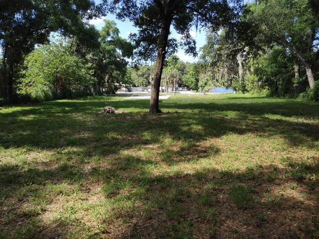 7321 Edgewater Drive, Orlando, FL 32810 (MLS #O5941928) :: Bustamante Real Estate