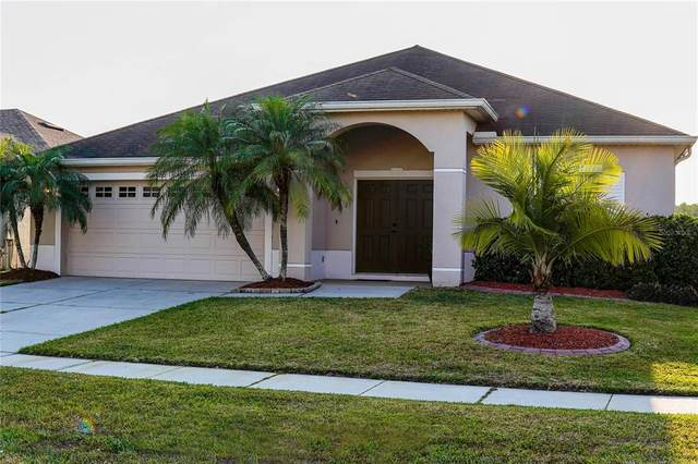 2922 White Cedar Circle, Kissimmee, FL 34741 (MLS #O5942186) :: Dalton Wade Real Estate Group