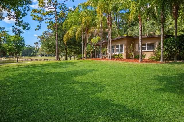 466 Wilford Avenue, Longwood, FL 32750 (MLS #O5942335) :: Tuscawilla Realty, Inc