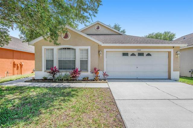15929 Stags Leap Drive, Lutz, FL 33559 (MLS #O5942495) :: Premier Home Experts