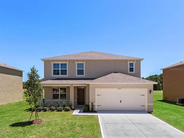 3308 Logan Berry Drive, Mount Dora, FL 32757 (MLS #O5942642) :: Frankenstein Home Team