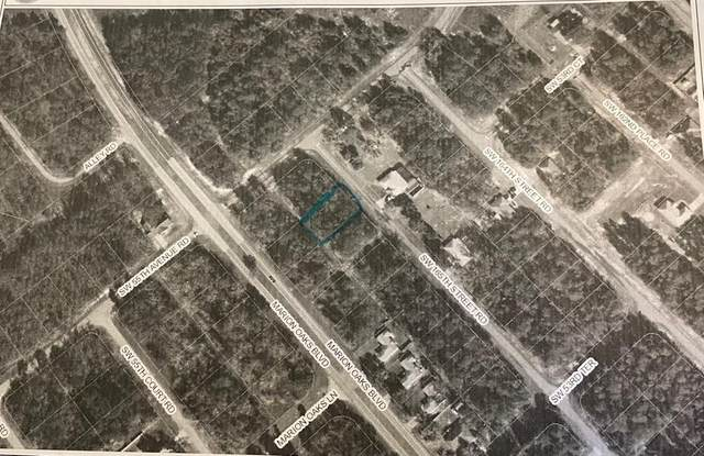 SW Sw 165Th Street Road, Ocala, FL 34473 (MLS #O5942728) :: Southern Associates Realty LLC