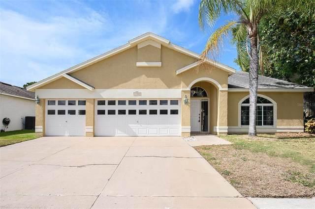 11222 Sailbrooke Drive, Riverview, FL 33579 (MLS #O5942775) :: Premier Home Experts