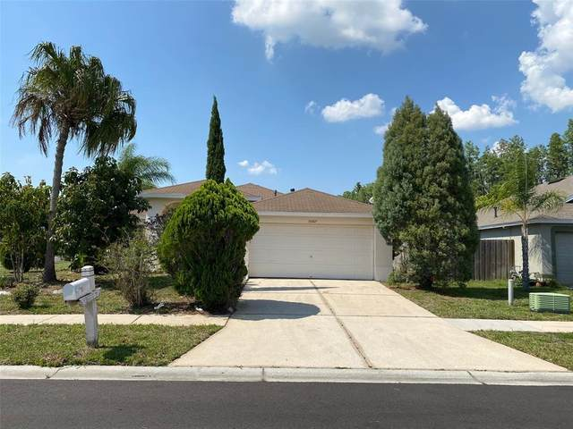 30817 Luhman Court, Wesley Chapel, FL 33543 (MLS #O5942917) :: The Brenda Wade Team