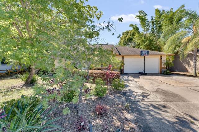81 S Winter Park Drive, Casselberry, FL 32707 (MLS #O5942959) :: Griffin Group