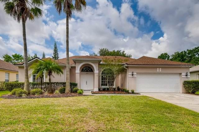 2224 Blackjack Oak Street, Ocoee, FL 34761 (MLS #O5942966) :: Bustamante Real Estate