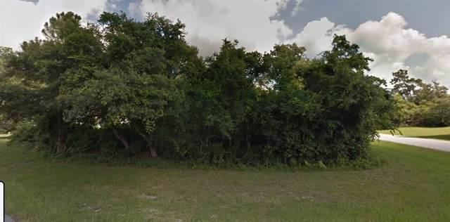 2940 Founder Court, Deltona, FL 32738 (MLS #O5943122) :: Bustamante Real Estate