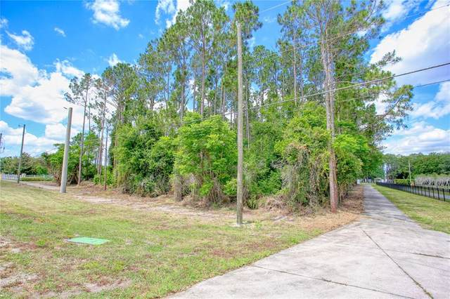 Winter Garden Vinela Road, Windermere, FL 34786 (MLS #O5943127) :: The Kardosh Team