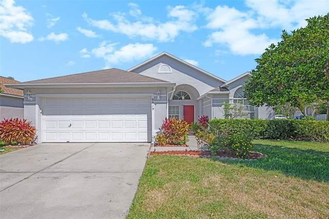 9519 Hamlet Lane, Tampa, FL 33635 (MLS #O5943149) :: The Paxton Group