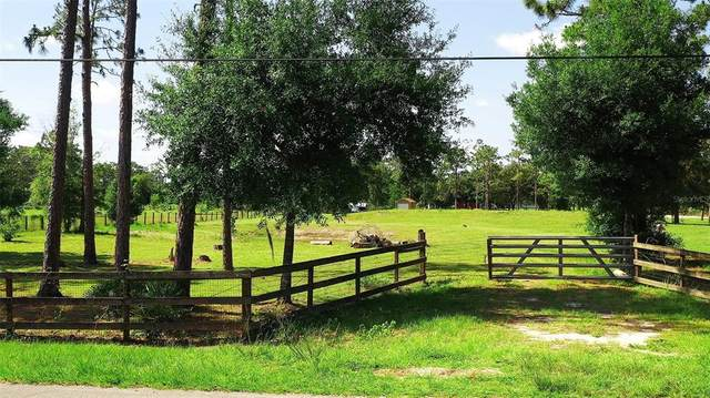 19632 Quinella Street, Orlando, FL 32833 (MLS #O5943207) :: The Robertson Real Estate Group