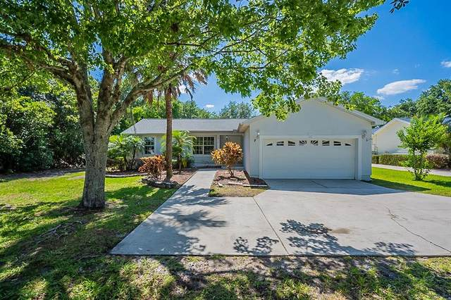 2910 Springlake Village Boulevard, Kissimmee, FL 34744 (MLS #O5943219) :: EXIT King Realty