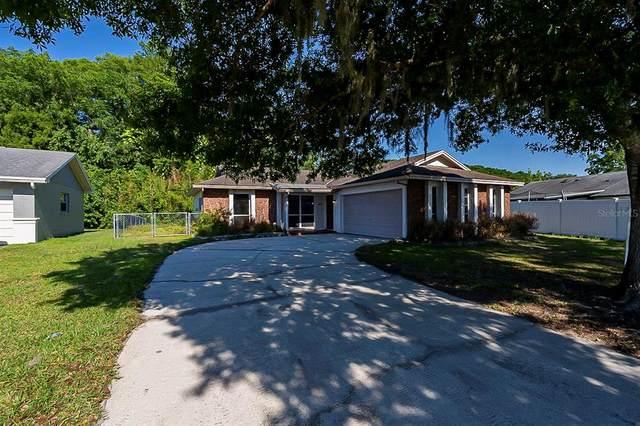 1427 Boreas Drive, Orlando, FL 32822 (MLS #O5943235) :: Griffin Group